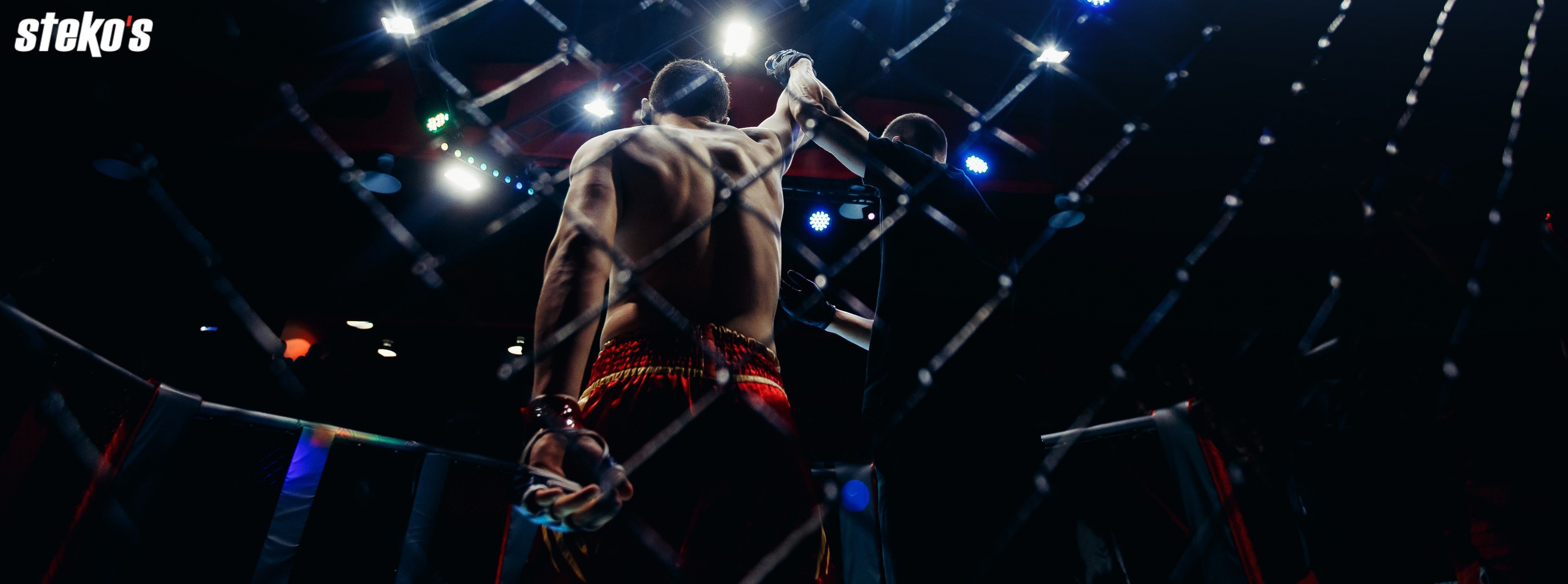Steko's Fight Night: WM-Kämpfe mit M.Lang, S.Preuss, D.Morin...